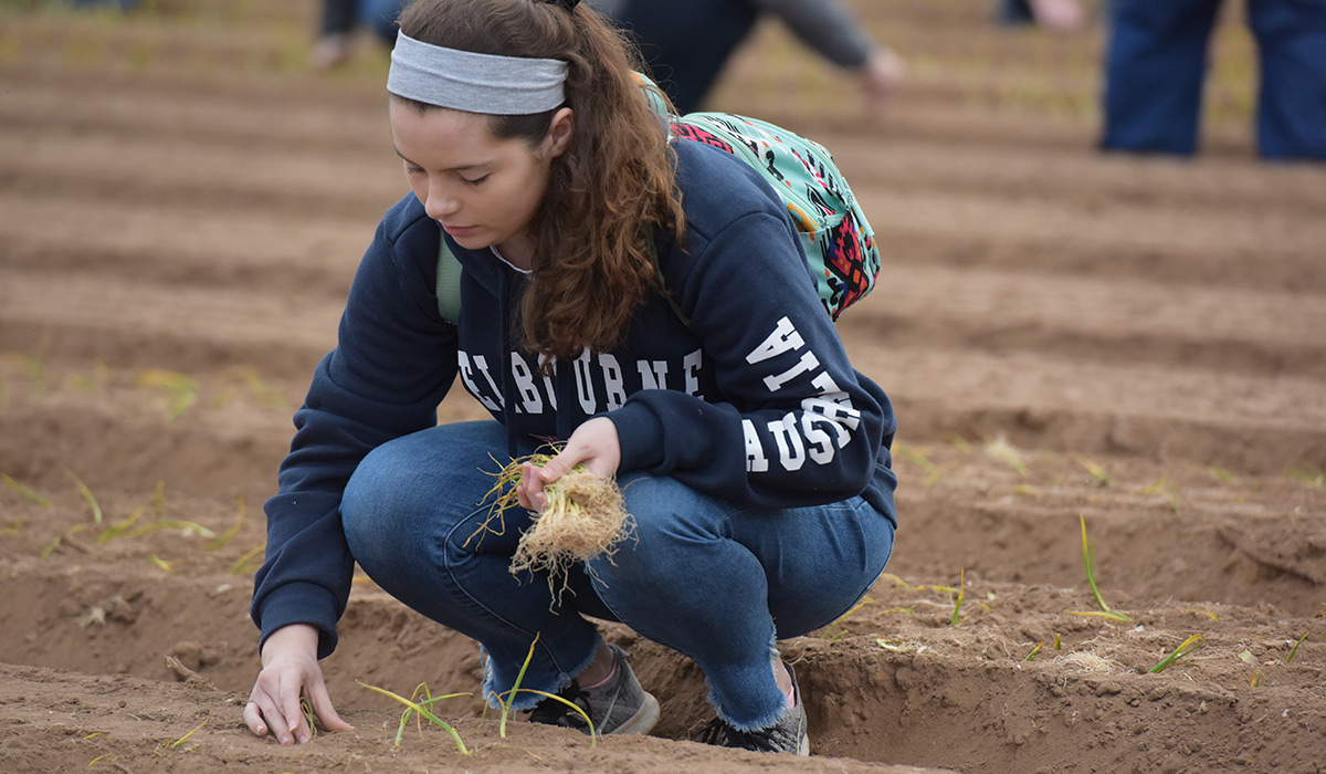 Female student squatting down and planting an onion.