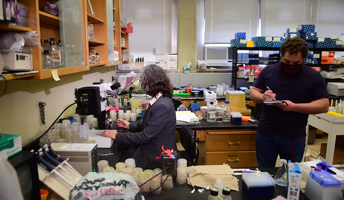 Professor Ann Corsi and a graduate student doing research in a lab