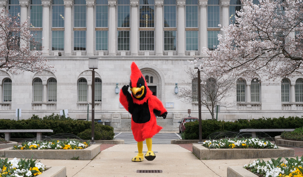Red the mascot in front of the library